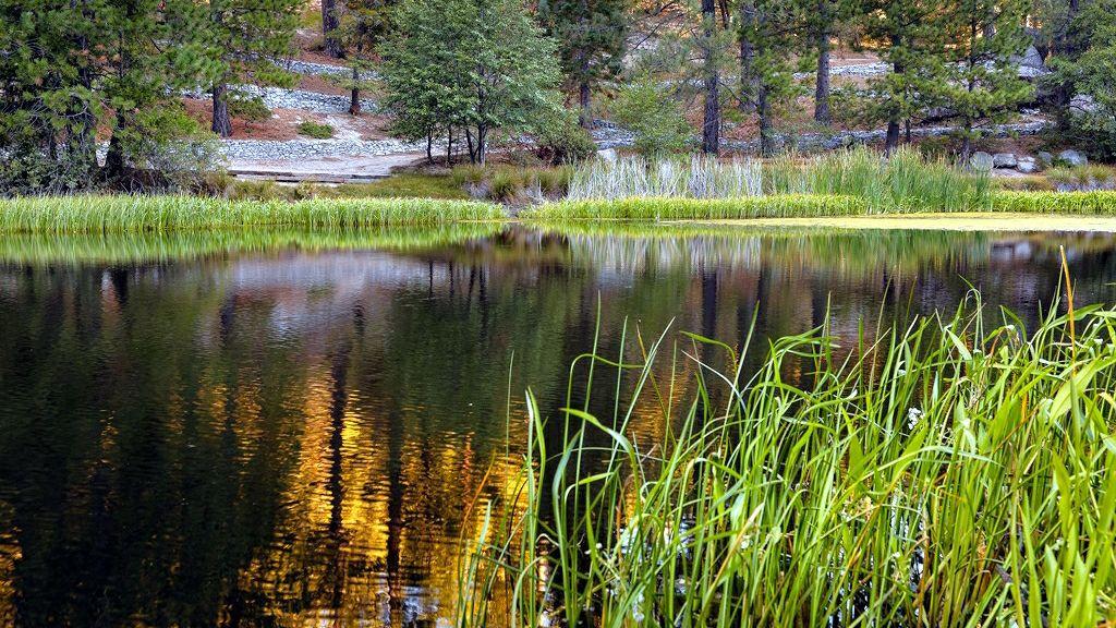 Lake Fulmor in the morning.